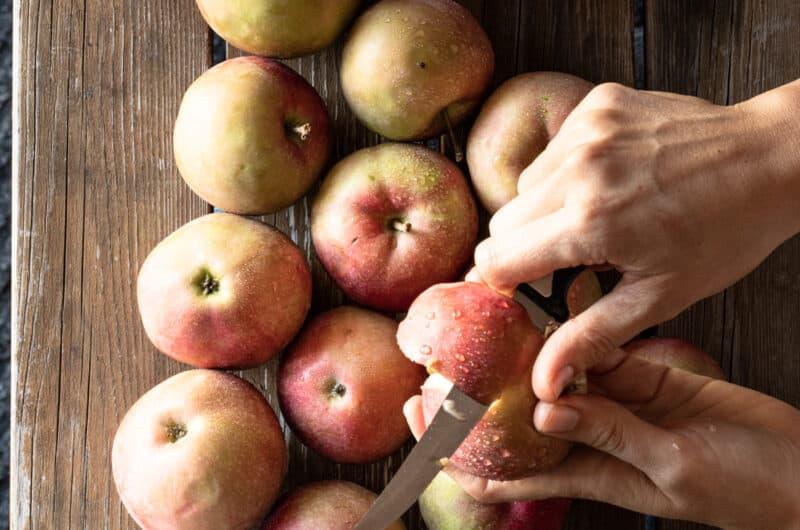 Protein-Rich AppleSauce