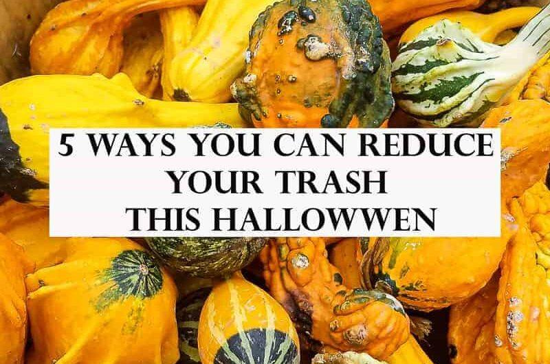 basket of squash and zero-waste tips
